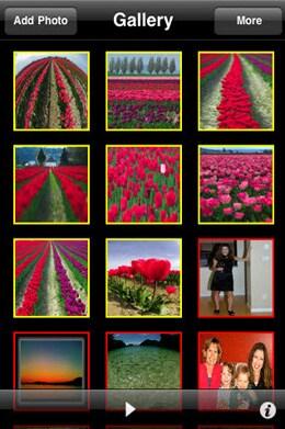 photo albums on iPad