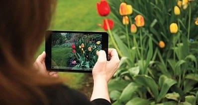 Top 15 Best iPad Photo Editors to Edit Photos on iPad
