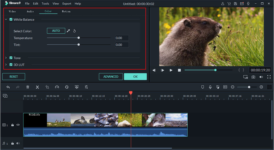 Action Cam Tool color correction