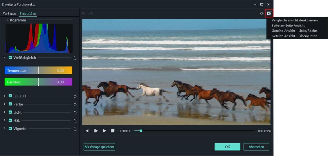 Videoeffekt Vorschau