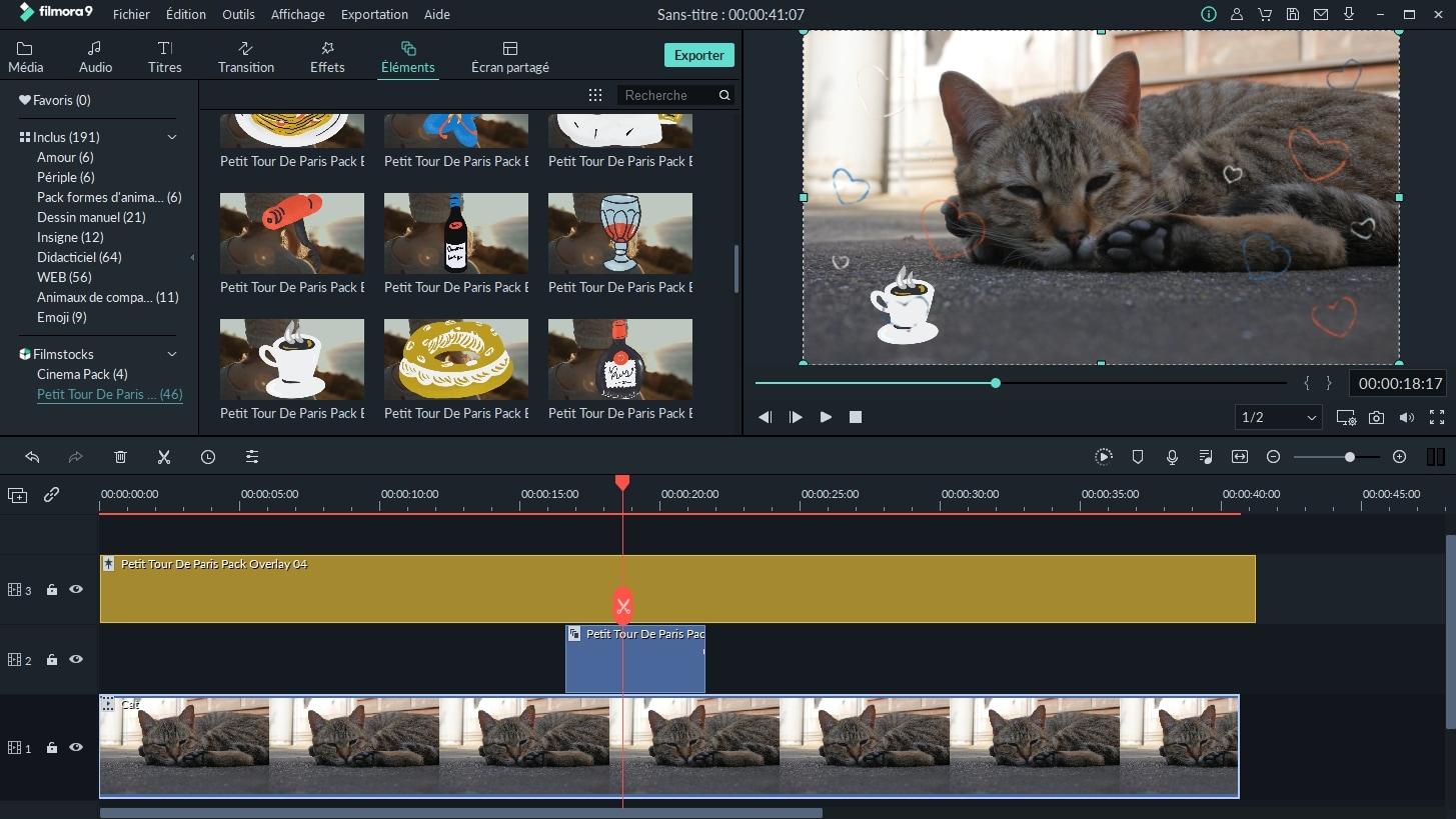 Tutoriel pour débutants : Comment réaliser des vidéos d'un animal de compagnie mignon et drôle
