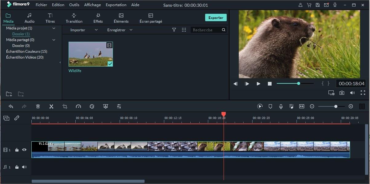 logiciel d'effets vidéo