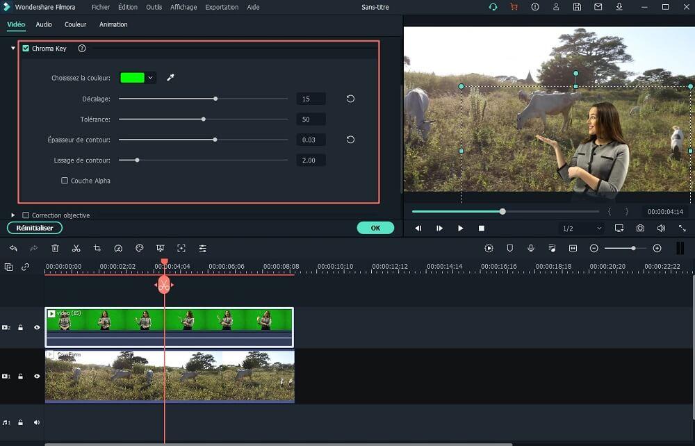 vidéo à écran vert