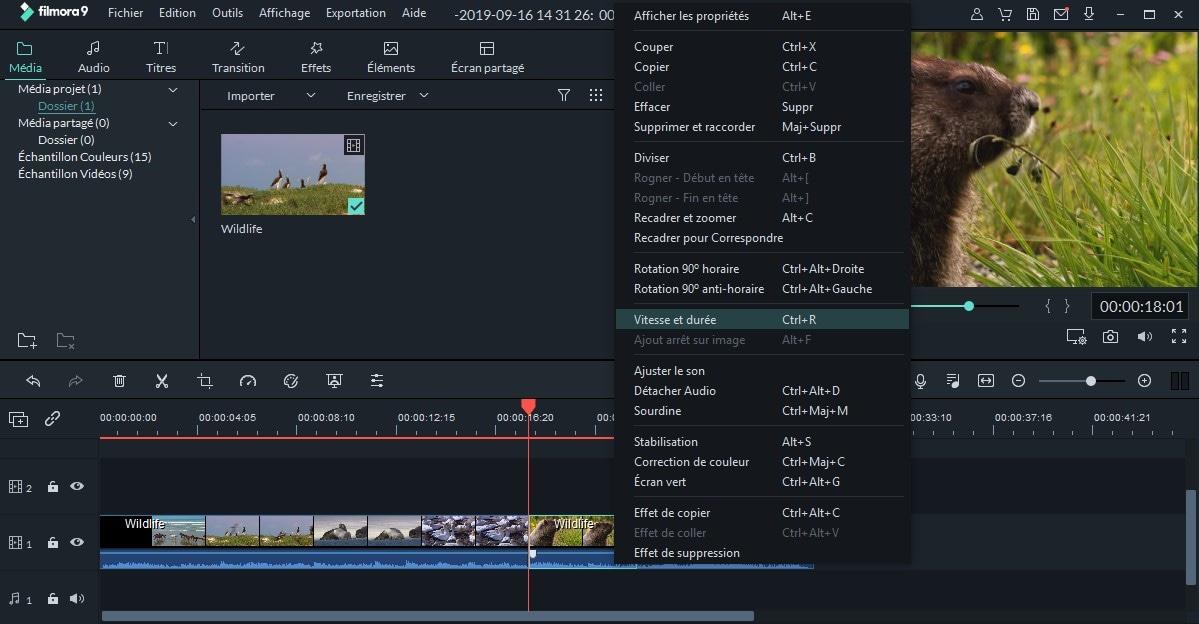 ralentir la vidéo dans filmora
