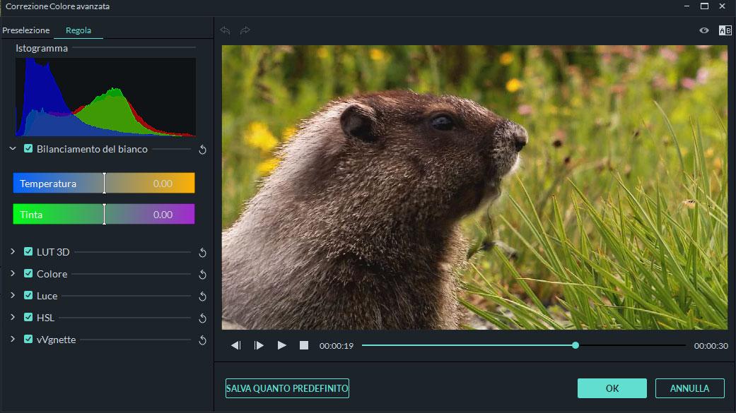 editor colori video