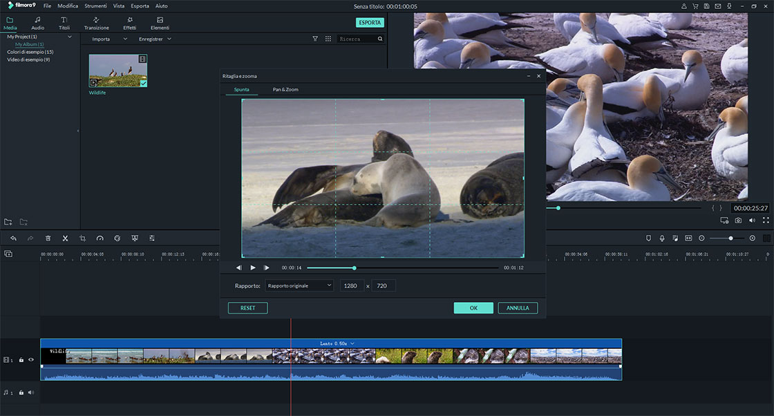 software creazione video