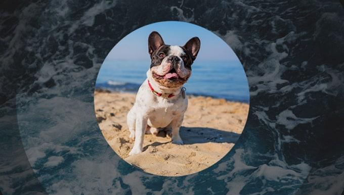 Top 10 Audiomischer-Apps für iPhone und Android zum Mischen von Musik 2019