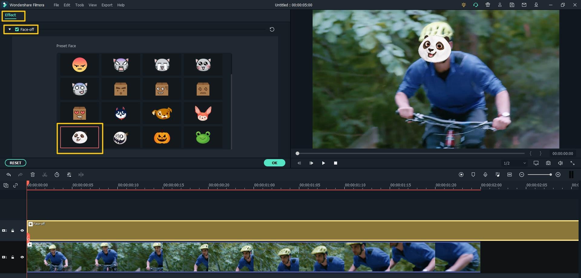 video face blur
