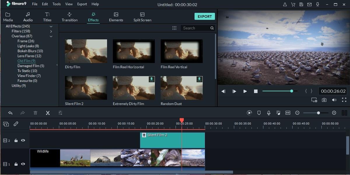 bokeh video background free