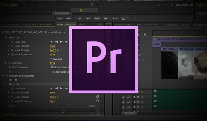 Premiere Pro Slow Motion - How to Make A Slow Motion in Adobe Premiere