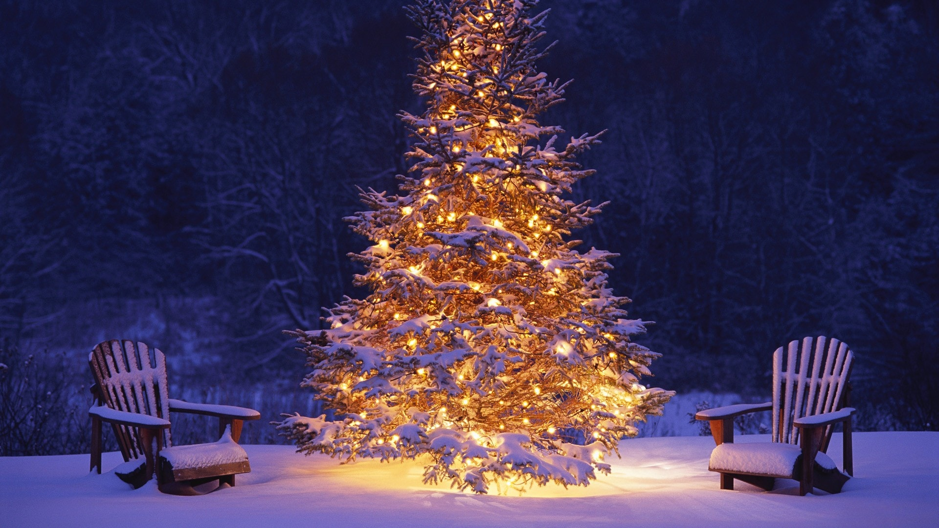 Get The Latest Hd Christmas Wallpapers For Free
