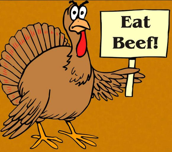 Download Free Thanksgiving Pictures, Images and Photos