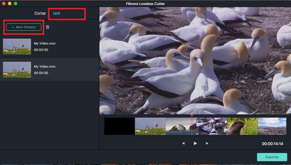 importar vários vídeos
