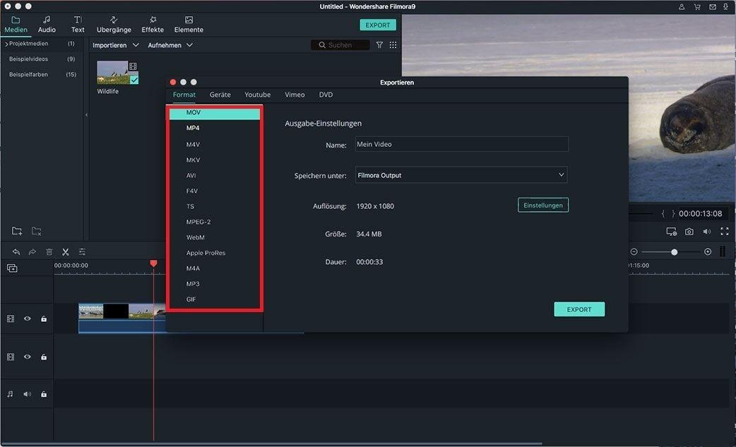 rückwärts abgespieltes video exportieren