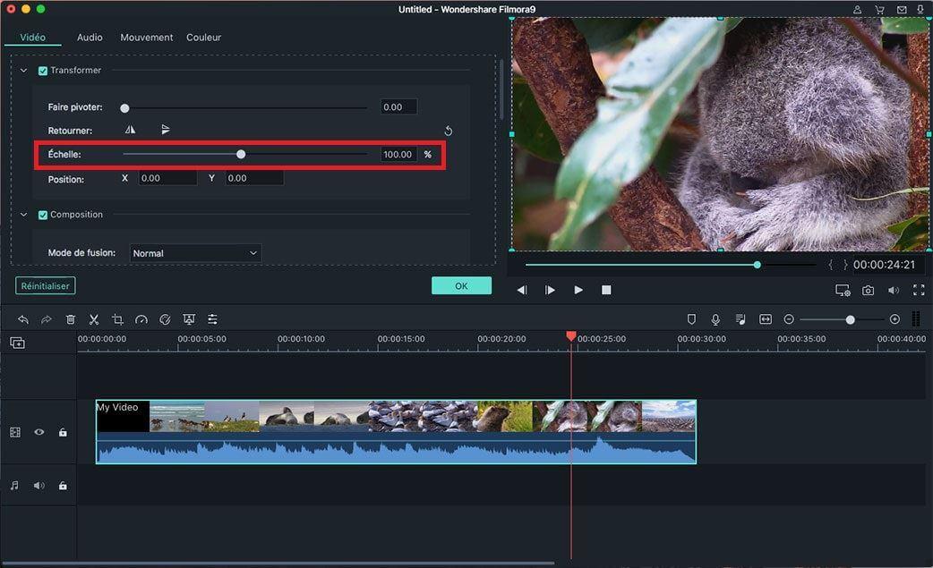 redimensionner l'échelle vidéo