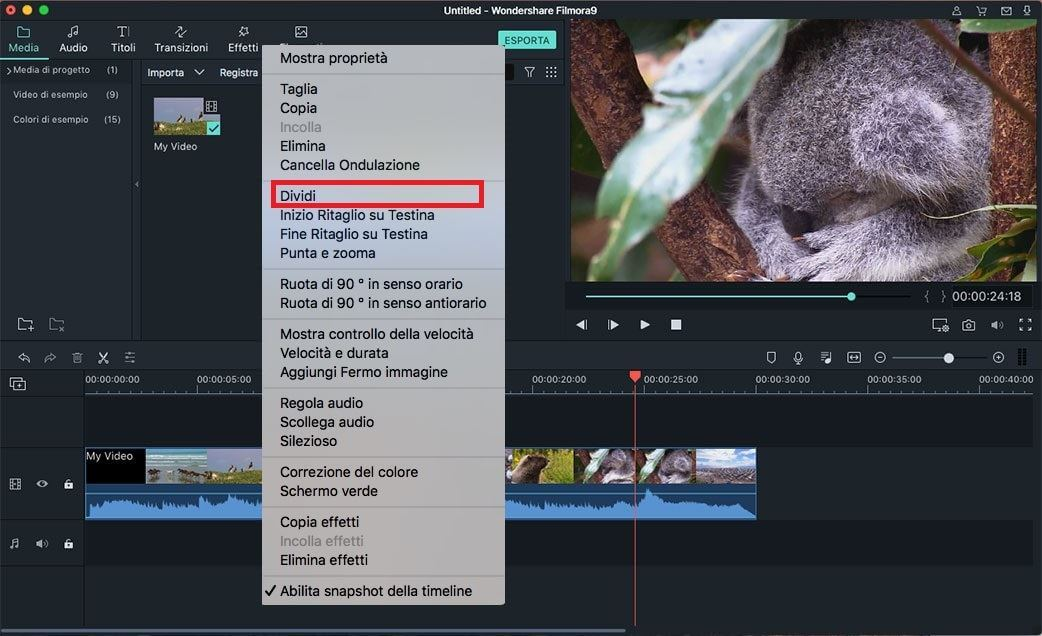 dividere video