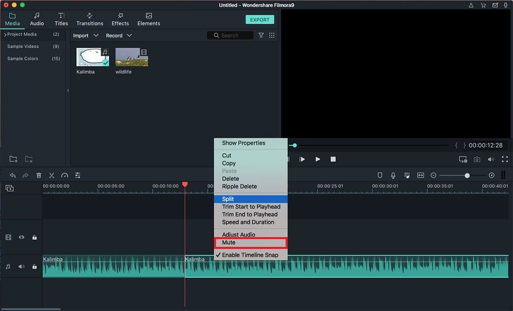 mute audio with audio editing program iOS