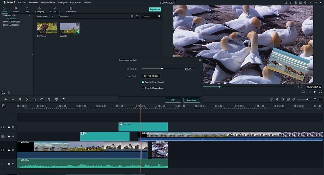 video achteruit afspelen