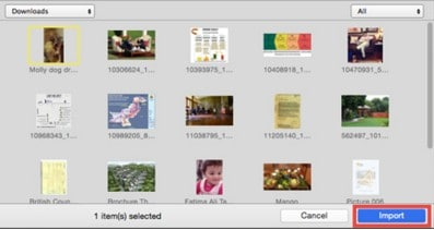 How to Import Media Files from Camra, Phones and Camcorders
