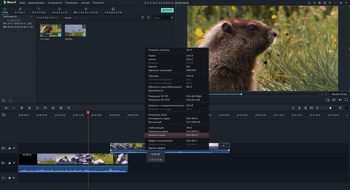 green screen video background