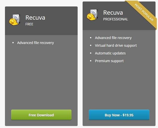 recuva-price