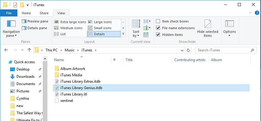 delete Genius files in iTunes library