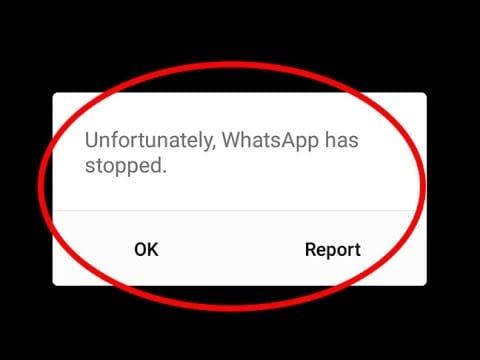 whatsapp crashing