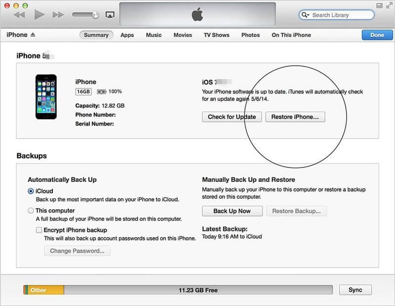 start restore the iphone