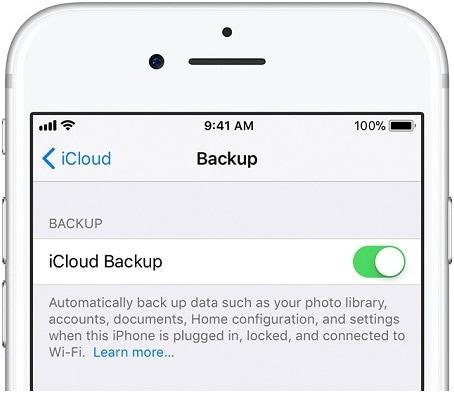 turn on the iCloud Backup option