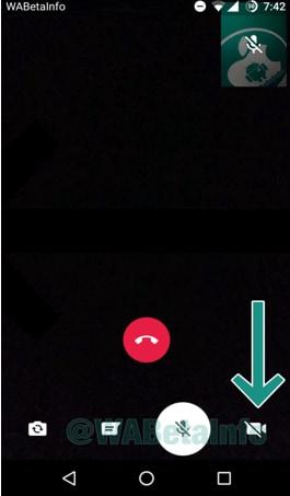 mute video call on whatsapp