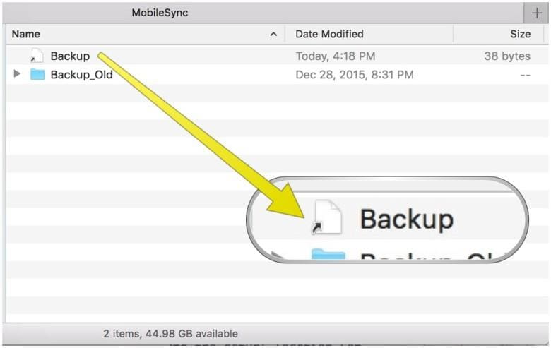 quit terminal and launch itunes to backup