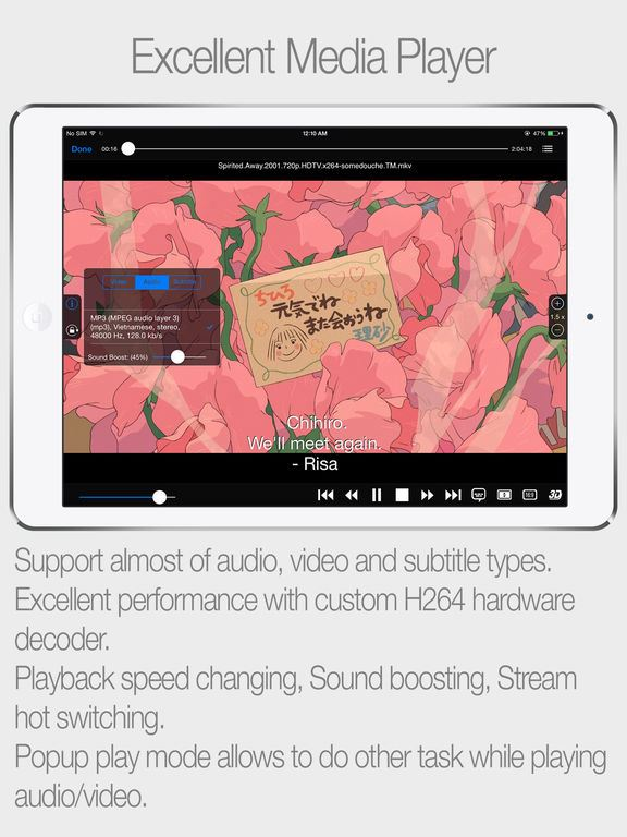convert wmv to ipad