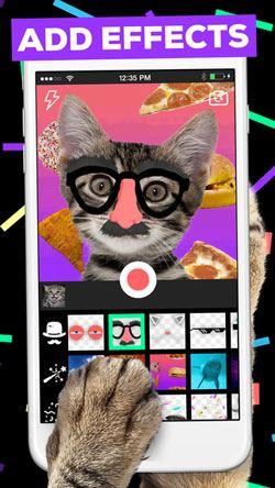 video gif app