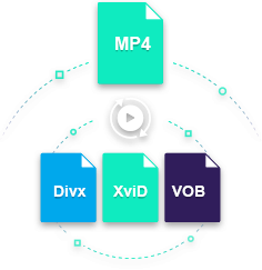 convert mp4 to divx